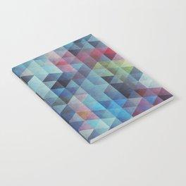 SENESCENCE Notebook