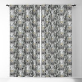 Energy Series: Transition Blackout Curtain