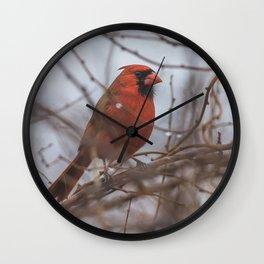 Rainy day cardinal Wall Clock