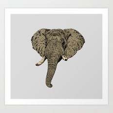 Elephant Head Art Print