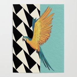 Parrot Pattern Poster