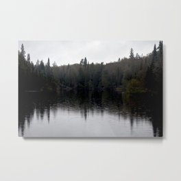 Forest Reflection Metal Print