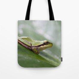 Mediterranean Tree Frog 1095 Tote Bag