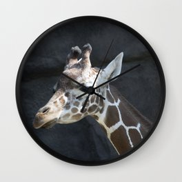 Philadelphia Zoo Series 22 Wall Clock