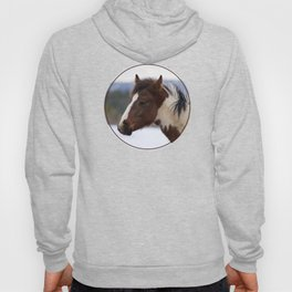 Tri-Colored Horse Hoody