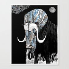 Muskox blk Canvas Print