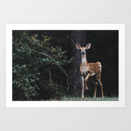 Young & Curious Art Print