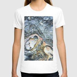 Florida Sandstone Pattern #1 T-shirt