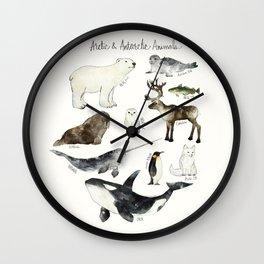 Arctic & Antarctic Animals Wall Clock