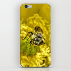 Rainy Day Cactus Flower Bee iPhone Skin