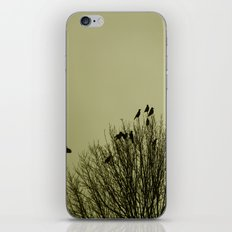 A Murder iPhone & iPod Skin