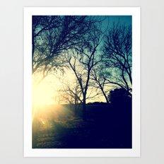 Sun Trees Art Print