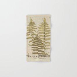 Vintage Fern Botanical Hand & Bath Towel