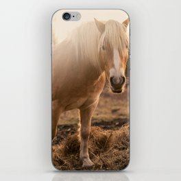 Horses v1 iPhone Skin