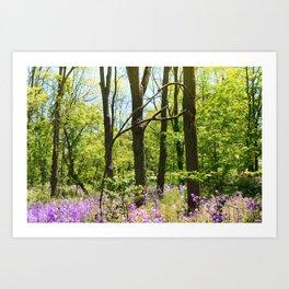 Purple flowers in green forest Art Print