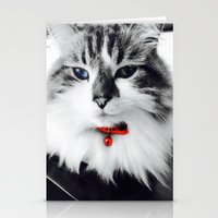 kiki Stationery Cards featuring Mr. Kiki by  Naartjie Photography