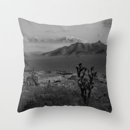 Joshua Tree Death Valley Throw Pillow