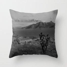 Joshua Tree Death Valley Throw Pillow