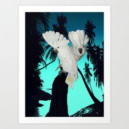 Cockatoo Bird at Sunset A314b Art Print