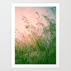 Greeting a New Day Art Print