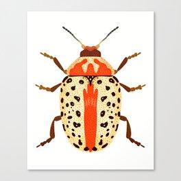 White and Orange Beetle Canvas Print