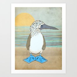 Blue Footed Booby Art Print
