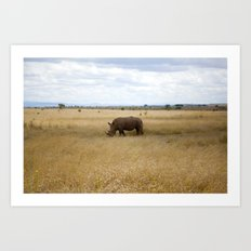 Rhino. Art Print