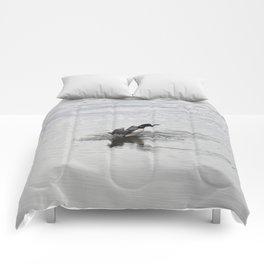 Loon Comforters