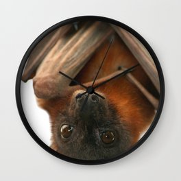 Little Red Flying Fox Hanging Out Wall Clock