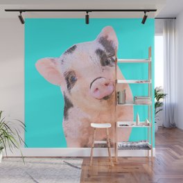 Baby Pig Turquoise Background Wall Mural