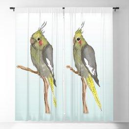 Cute female cockatiel Blackout Curtain