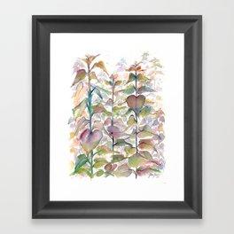 Wild flowers II Framed Art Print