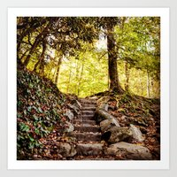 Rock Stairway Cades Cove Tennessee by Alli Gunter Photography Art Print