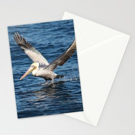 Pelican Pete Stationery Cards