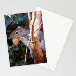Walnut mouth Stationery Cards