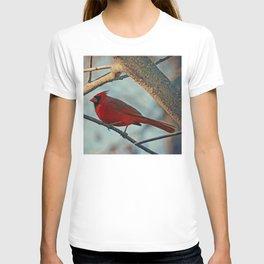Pretty Male Cardinal T-shirt