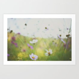 . cosmos are love . Art Print