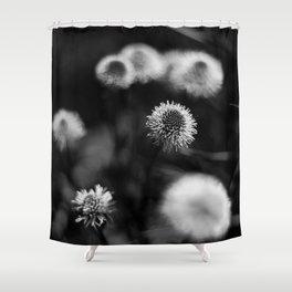 Spanish Floral Dancers Shower Curtain