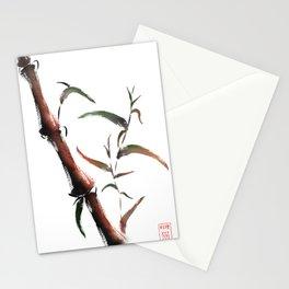 Bamboo on white background Stationery Cards