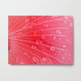 Pink Rain Metal Print