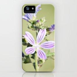 Malva iPhone Case