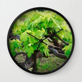 Grape vines Wall Clock