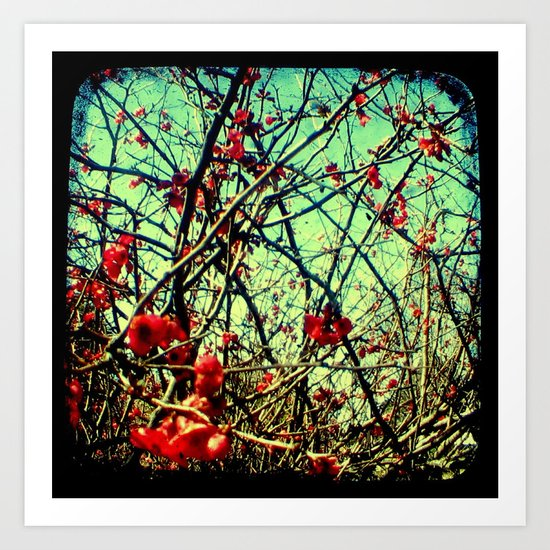 Blossom Frenzy - Through The Viewfinder (TTV) Art Print