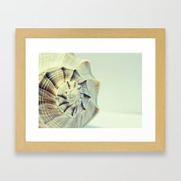 Pretty Beige Spiral Seashell Framed Art Print