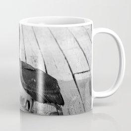 Juvenile Brown Pelican Tale 4 Coffee Mug