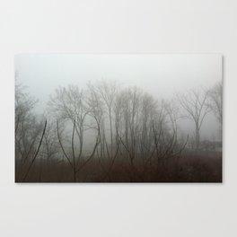 Mistified Canvas Print