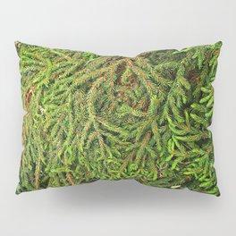 Boughs Pillow Sham