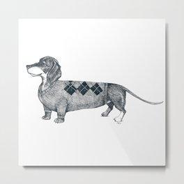 Dachshund wearing argyle sweater Metal Print