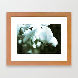 mossy orchid Framed Art Print