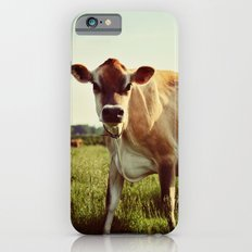 jersey cow iPhone 6s Slim Case